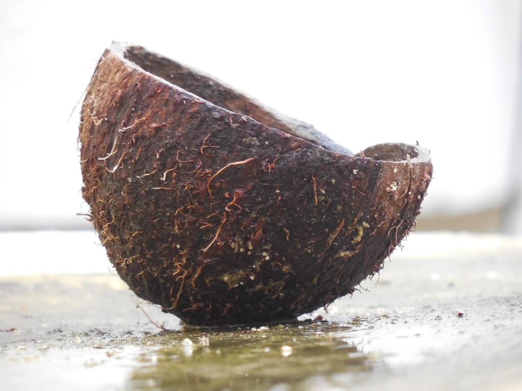 Kokoswasser: Weitaus mehr als nur ein trendiger Durstlöscher