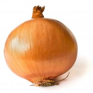 Die Zwiebel: Ein echter Allrounder, nicht nur in der Küche