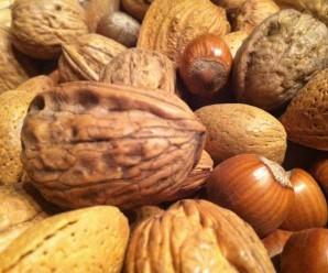 Nüsse: Nur einer von vielen Hungerstoppern