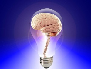 Richtig essen, besser denken: 4 Gehirn-Vitalstoffe