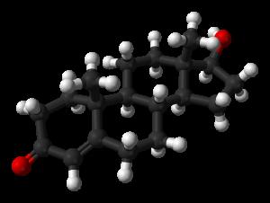 Testosteron: Das wichtigste männliche Geschlechtshormon