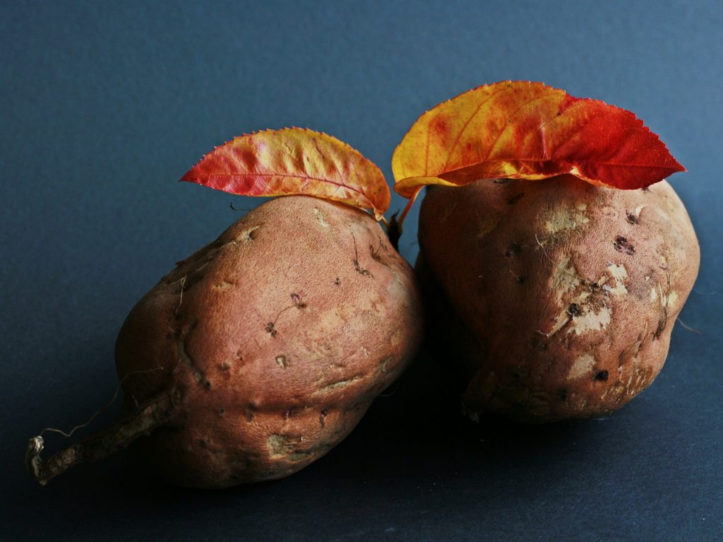 sweet-potato-534874_1280