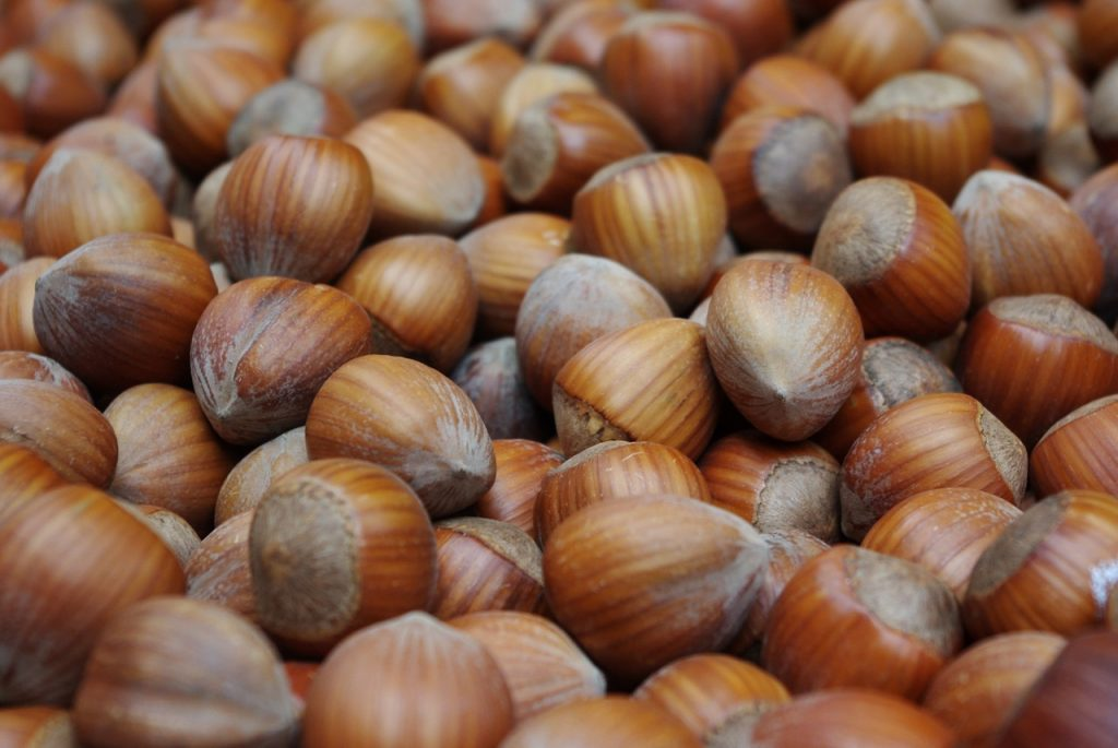 hazelnuts-1339881_1280