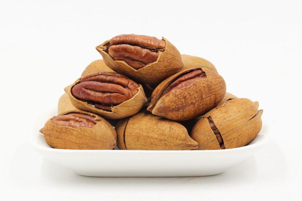 Nusssorten